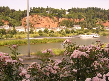 Mosel river in Trier