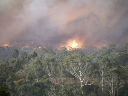 h2009_0211bushfire_pics11feb0015