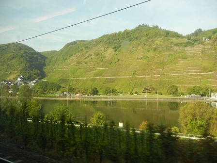 The Mosel